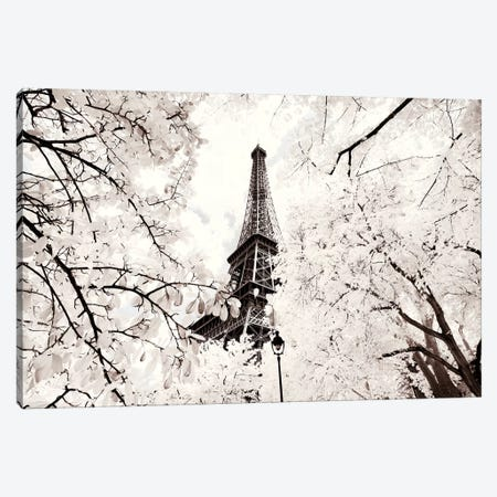 Between Two Trees Canvas Print #PHD661} by Philippe Hugonnard Canvas Wall Art