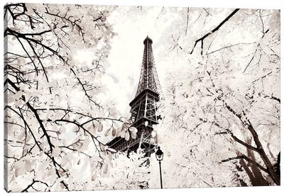 Between Two Trees Canvas Art Print