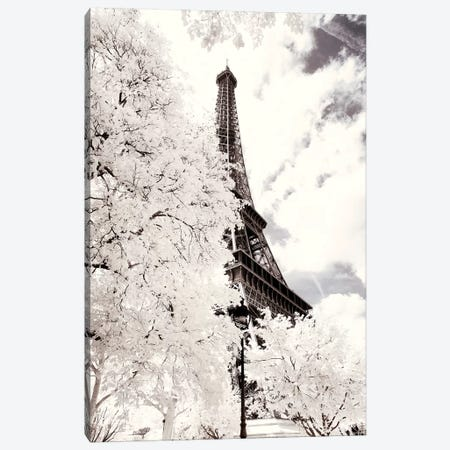 Between Two Trees II Canvas Print #PHD662} by Philippe Hugonnard Canvas Art