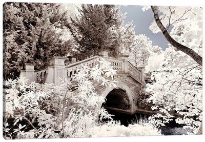 Crossed The Bridge Canvas Art Print