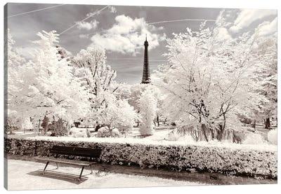 Icy Winter Canvas Art Print