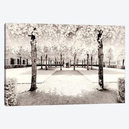 Quiet Atmosphere Canvas Print #PHD683} by Philippe Hugonnard Canvas Artwork