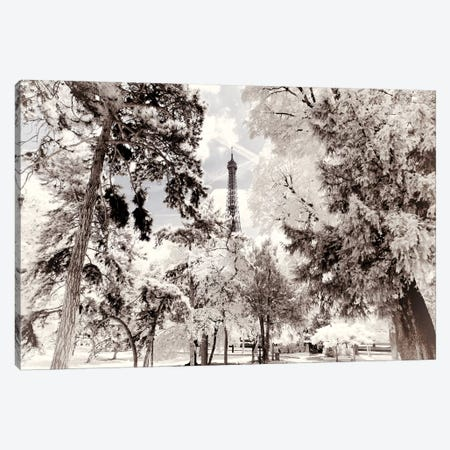 Snowy Forest Canvas Print #PHD687} by Philippe Hugonnard Art Print