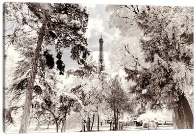 Snowy Forest Canvas Art Print