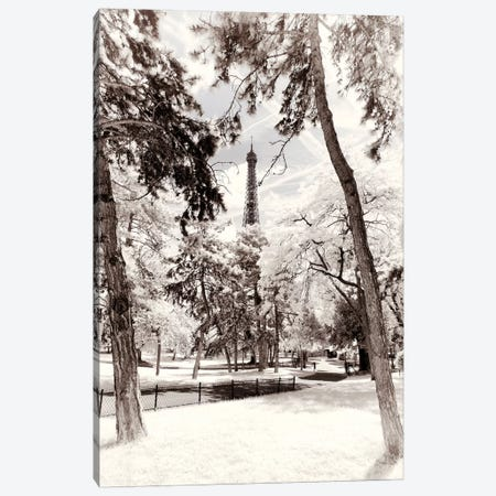White Forest Canvas Print #PHD695} by Philippe Hugonnard Canvas Art