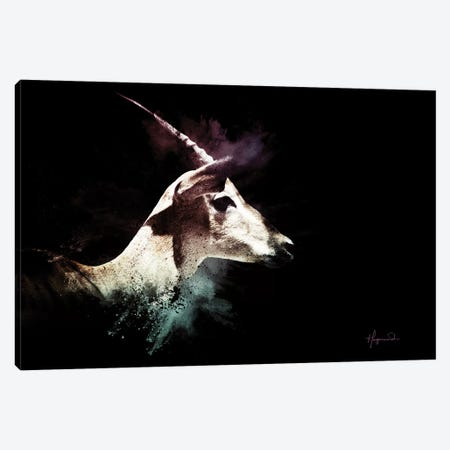 The Impala Canvas Print #PHD797} by Philippe Hugonnard Canvas Art Print