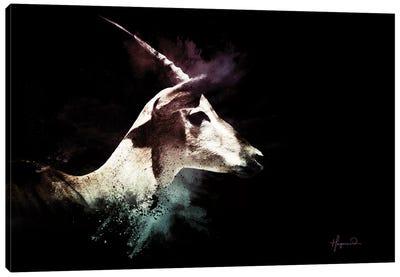 The Impala Canvas Art Print