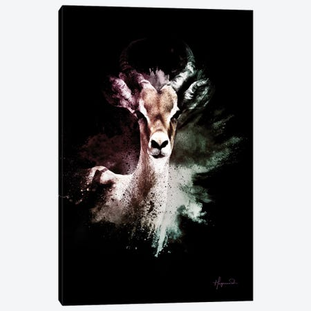 The Antelope Canvas Print #PHD799} by Philippe Hugonnard Canvas Art