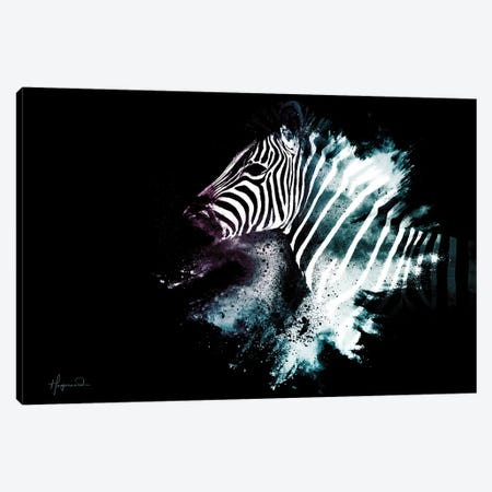 The Zebra Canvas Print #PHD800} by Philippe Hugonnard Canvas Wall Art