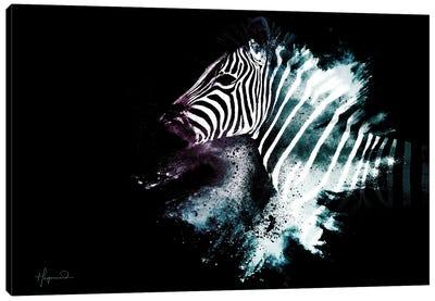 The Zebra Canvas Art Print