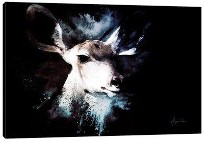 The Impala II Canvas Art Print