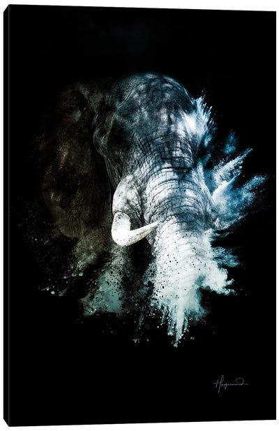 The Elephant II Canvas Art Print