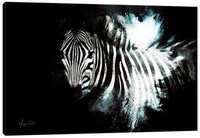 The Zebra II Canvas Art Print