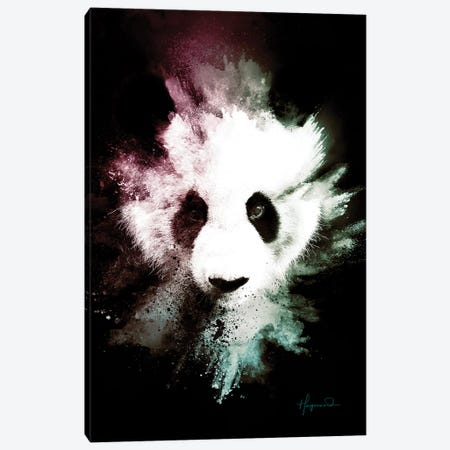 The Panda Canvas Print #PHD811} by Philippe Hugonnard Canvas Art Print