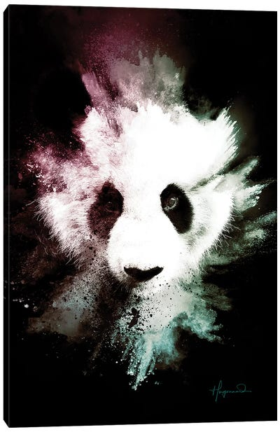 The Panda Canvas Art Print