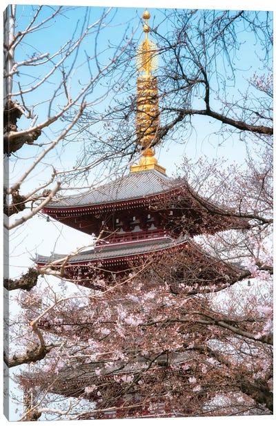 Pagoda Senjo-Ji Canvas Art Print