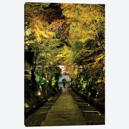 Night Staircase Canvas Print #PHD834} by Philippe Hugonnard Canvas Artwork