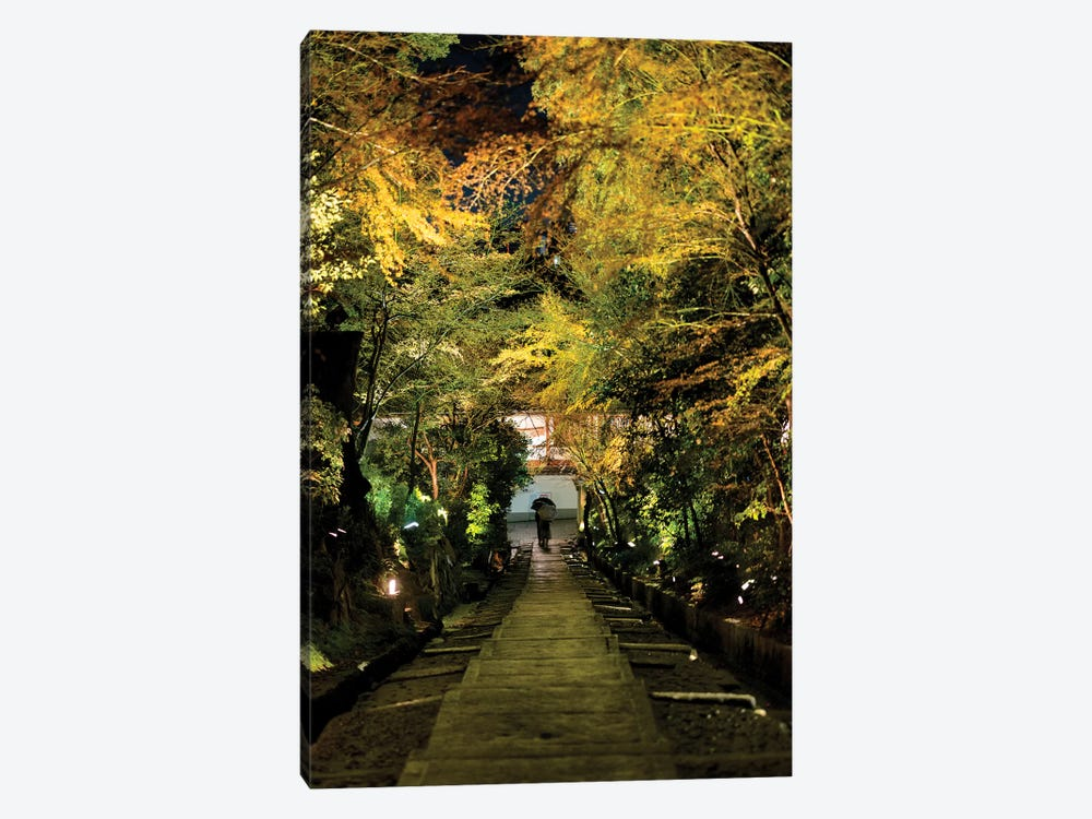 Night Staircase by Philippe Hugonnard 1-piece Canvas Artwork