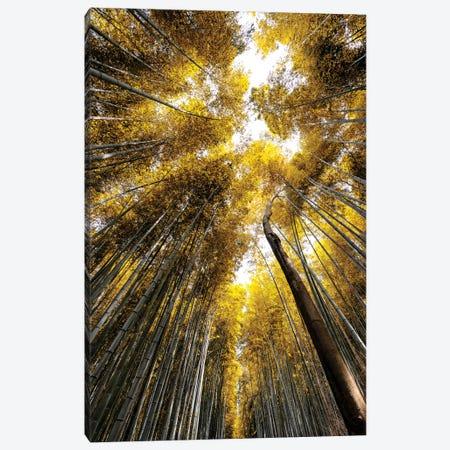 Arashiyama Bamboo Forest V Canvas Print #PHD844} by Philippe Hugonnard Canvas Art Print