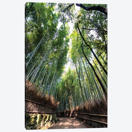 Kyoto'S Bamboo Forest Canvas Print #PHD855} by Philippe Hugonnard Canvas Art