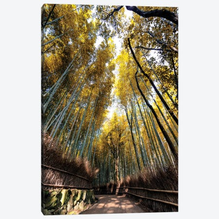 Kyoto'S Bamboo Forest II Canvas Print #PHD856} by Philippe Hugonnard Canvas Artwork