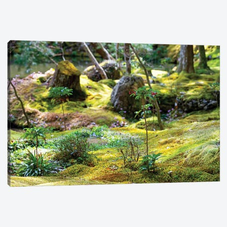 Beautiful Moss Garden 3-Piece Canvas #PHD857} by Philippe Hugonnard Canvas Artwork