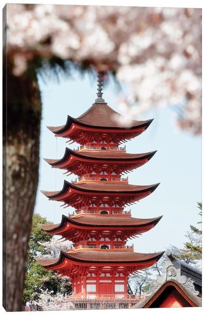 Miyajima Pagoda With Sakura Canvas Art Print