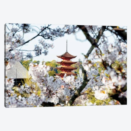 Beautiful Pagoda And Sakura In Miyajima Canvas Print #PHD870} by Philippe Hugonnard Art Print