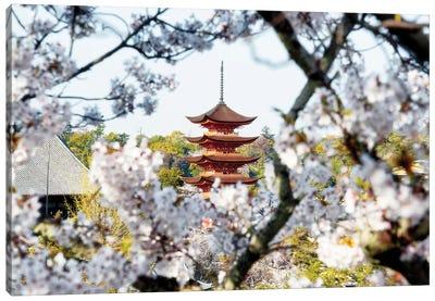 Beautiful Pagoda And Sakura In Miyajima Canvas Art Print