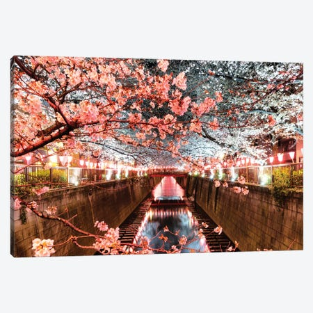 Cherry Blossom At Meguro Canal Canvas Print #PHD898} by Philippe Hugonnard Art Print