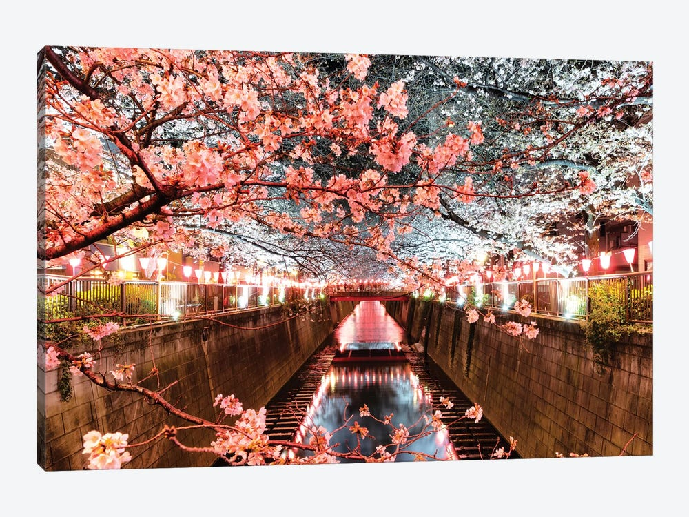 Cherry Blossom At Meguro Canal by Philippe Hugonnard 1-piece Canvas Artwork