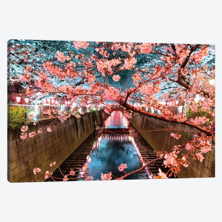 Cherry Blossom At Meguro Canal II Canvas Print #PHD899} by Philippe Hugonnard Art Print