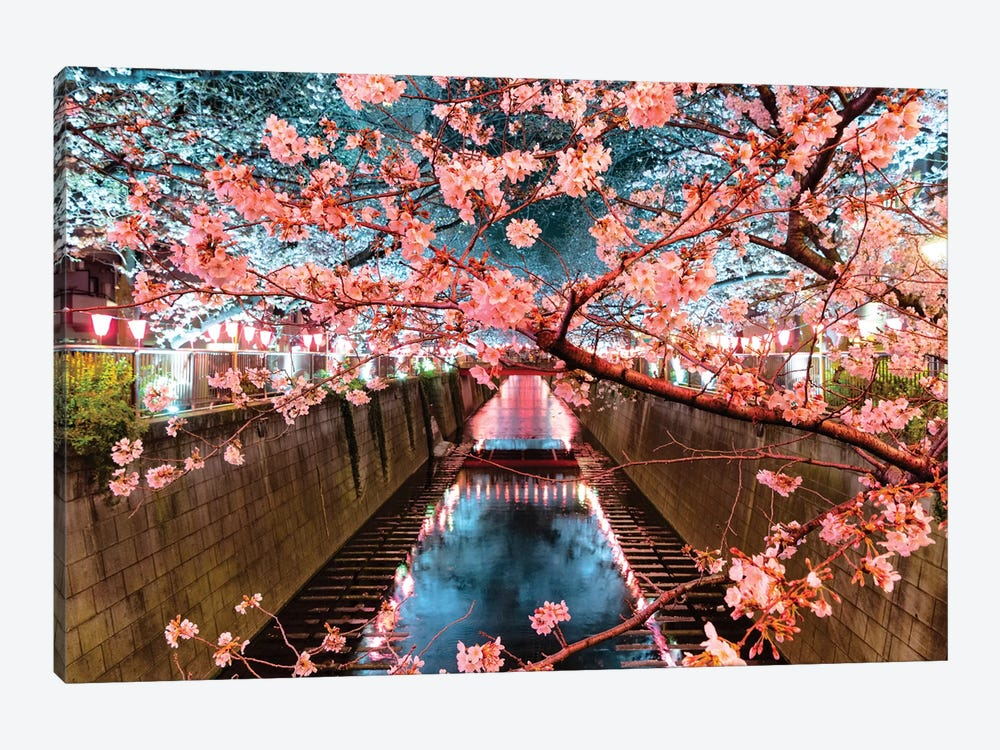 Cherry Blossom At Meguro Canal II by Philippe Hugonnard 1-piece Art Print