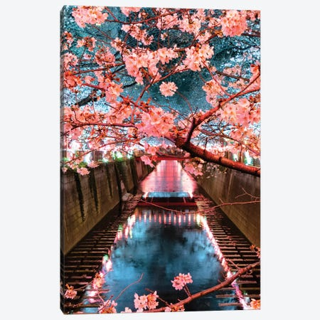Cherry Blossom At Meguro Canal III Canvas Print #PHD900} by Philippe Hugonnard Canvas Print