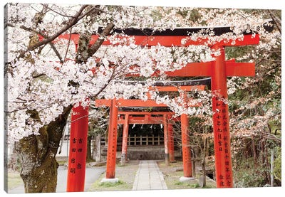 Yoshida Shrine Torii Canvas Art Print