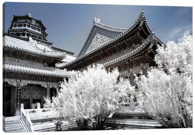Another Look At China II Canvas Art Print