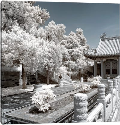 Another Look At China IV Canvas Print #PHD97