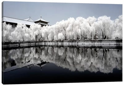 Another Look At China IX Canvas Art Print