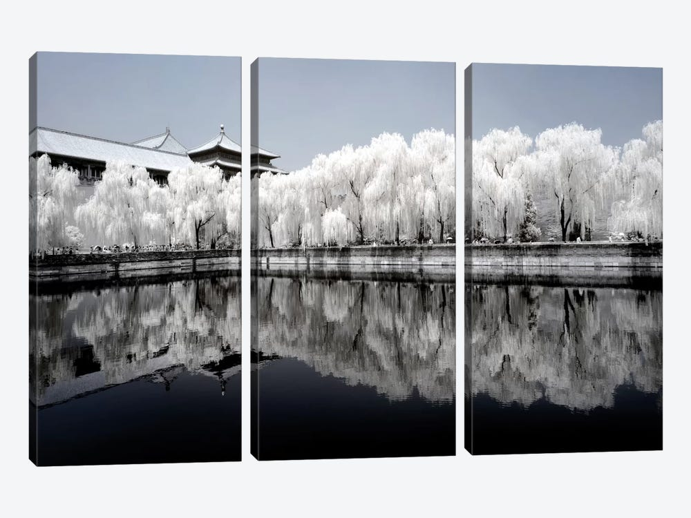 Another Look At China IX by Philippe Hugonnard 3-piece Art Print