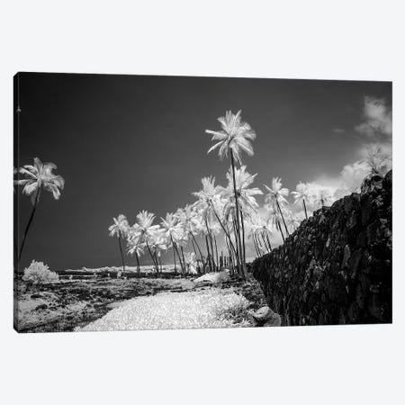 Pu'uhonua o Honaunau, The Big Island, Hawaii, Usa Canvas Print #PHK1} by Peter Hawkins Art Print