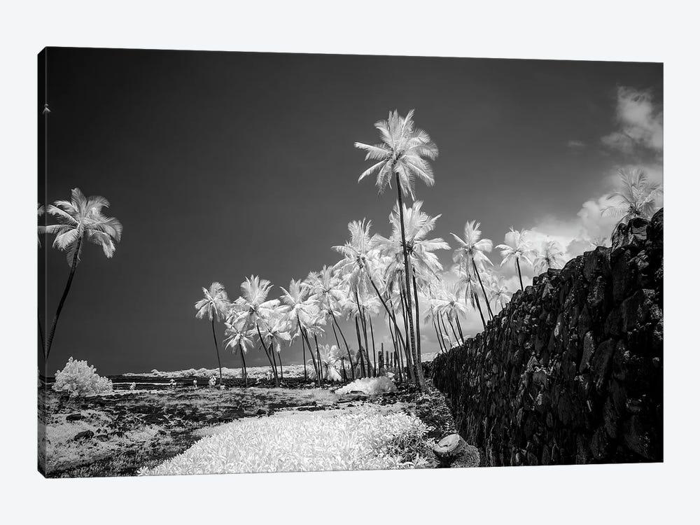 Pu'uhonua o Honaunau, The Big Island, Hawaii, Usa by Peter Hawkins 1-piece Canvas Artwork