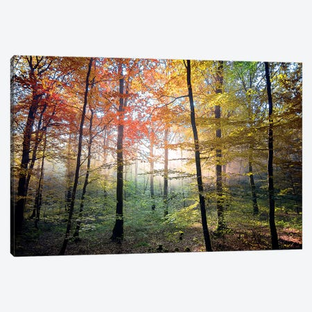 The Fairy Place Canvas Print #PHM198} by Philippe Manguin Canvas Art