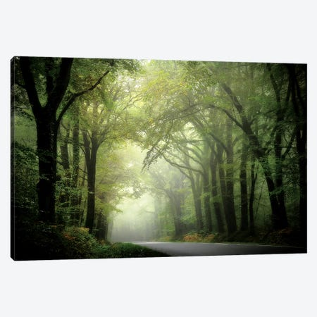 The Passage Canvas Print #PHM213} by Philippe Manguin Canvas Print