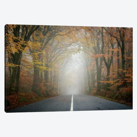 The Road Canvas Print #PHM215} by Philippe Manguin Canvas Art