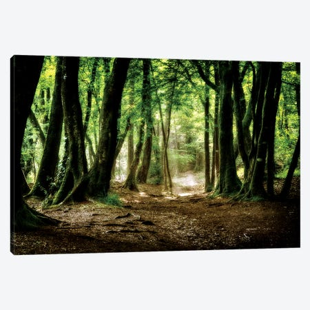 Val Sans Retour In Broceliande Forest Canvas Print #PHM223} by Philippe Manguin Canvas Artwork