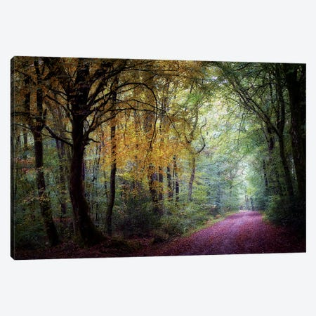 Welcome In The Forest Canvas Print #PHM232} by Philippe Manguin Canvas Print