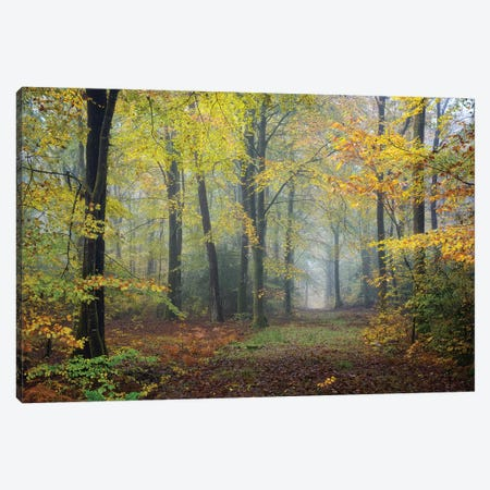 Broceliande Fall Canvas Print #PHM25} by Philippe Manguin Canvas Wall Art