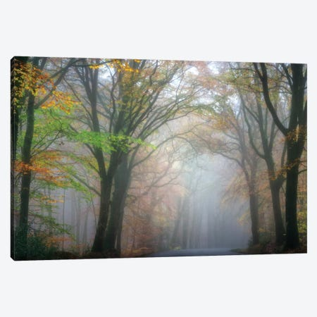 By Crossing The Forest Canvas Print #PHM31} by Philippe Manguin Canvas Wall Art
