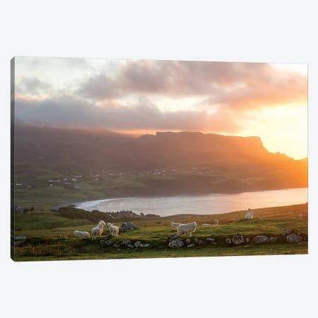 Sunset On Skye Island Grasslands, Scotland Canvas Print #PHM333} by Philippe Manguin Canvas Art