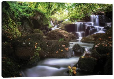 Waterfall In France, Brittany Forest Canvas Art Print
